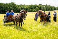 2015-06-10 RDA Woodchurch Driving Group