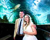 2016-05-29 Sealife Wedding