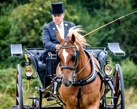 2018-08-12 Woodchurch RDA at The Oaks Carriage Driving Show
