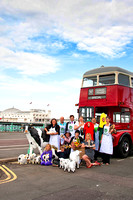 Gearing up for September's Brighton & Hove Festival of Food & Drink July 14th 2011