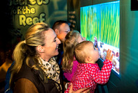 2016-03-23 Secrets of the Reef at SEALIFE Brighton