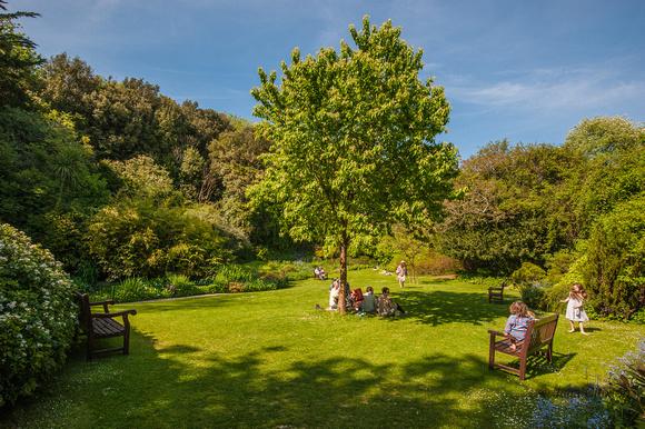 Julia claxton photography 2013 05 26 highdown gardens for Garden house design worthing